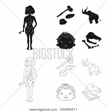 Weapon, Hammer, Elephant, Mammoth .stone Age Set Collection Icons In Black, Outline Style Vector Sym
