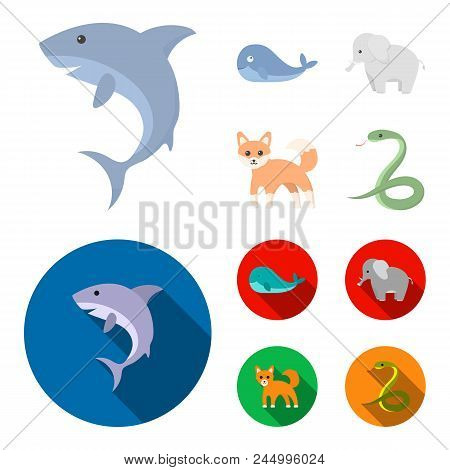 Whale, Elephant, Snake, Fox.animal Set Collection Icons In Cartoon, Flat Style Vector Symbol Stock I