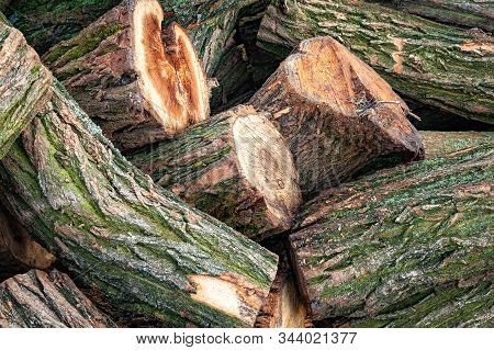Logs For Firewood. Close-up Of A Stack Of Cut Logs. Stack Firewood. Stack Of Chopped Logs Ready For
