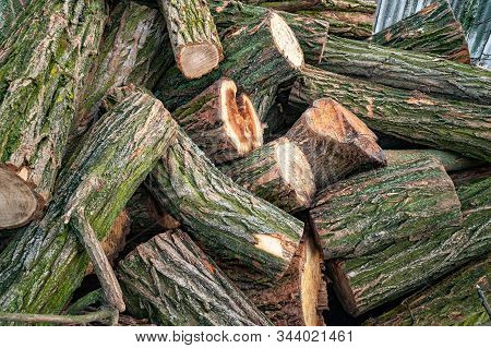 Logs For Firewood. Cut A Stack Of Logs. Stack Of Firewood. Woodpile Of Chopped Logs Prepared For The