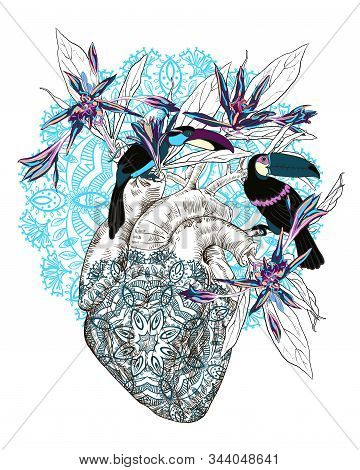 Vector Drawing Human Anatomical Heart With Flowers Drawing Human Anatomical Heart With Flowers And T