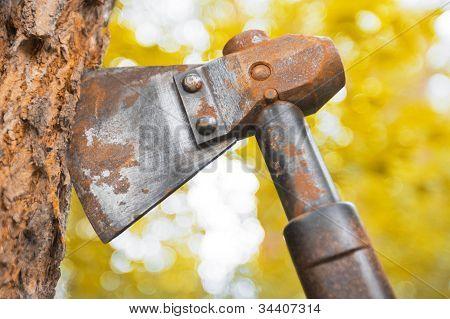 Old Hatchet Blade In Wood Stem