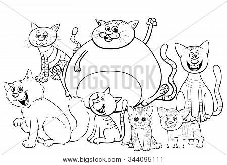 Black And White Cartoon Illustration Of Cats And Kittens Comic Animal Characters Group Coloring Book