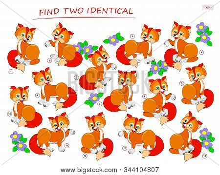 Logic Puzzle Game For Children And Adults. Need To Find Two Identical Foxes. Printable Page For Kids