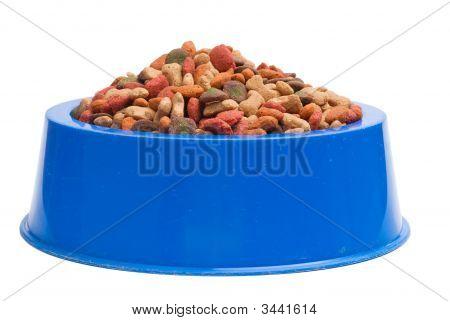 Pet Food Bowl Isolated White On Background
