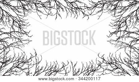 Autumn Branches Of Trees Silhouette, Frame. Applied Clipping Mask. Vector Illustration. Background F