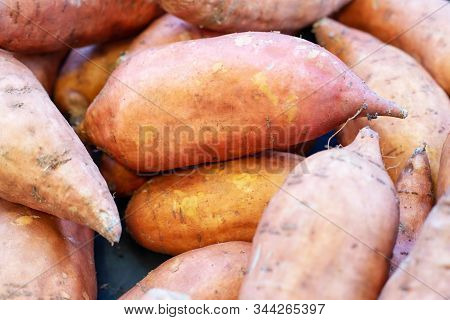 Fresh Raw Organic Sweet Potato Vegetables As A Background. Sweet Potato For Sale At Farmers Market.