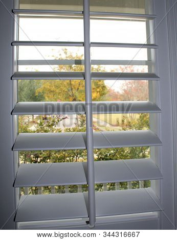 Open Vertical White Plantation Shutters With Fall Tree