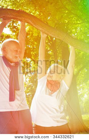 Active couple seniors hanging on the tree and having fun in nature