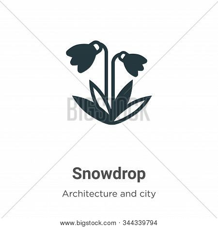 Snowdrop icon isolated on white background from farming and gardening collection. Snowdrop icon tren