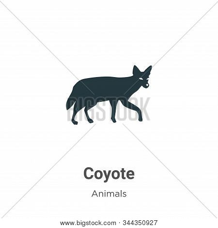 Coyote icon isolated on white background from animals collection. Coyote icon trendy and modern Coyo
