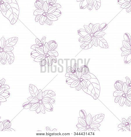 Herbs, Spices And Seasonings Collection. Vector Hand Drawn Seamless Pattern With Flowers Of Citrus B