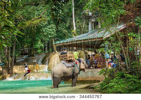 Luang Prabang, Laos - October 12, 2019: Elephant At Tad Sae Waterfalls, Luang Prabang, Laos.