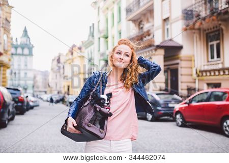 Chihuahua Dog Carried In Pet Bag. Cute Dog In Transparent Pet Travel Carrier. Caucasian Woman Holdin