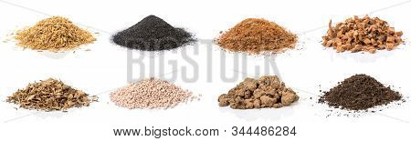 Set Of Material For Growing The Plant. Rice Chaff, Black Chafe, Coconut Shells Hair And Spathe, Dry
