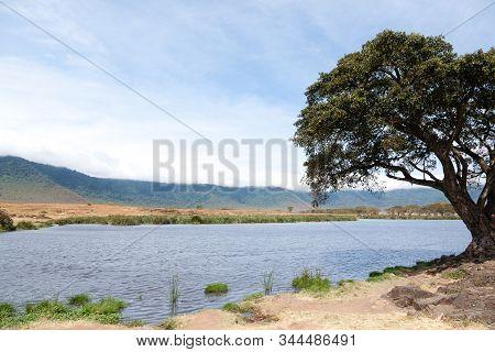 Ngorongoro crater beautiful landscape, Tanzania, Africa. Ngorongoro Conservation Area panorama poster