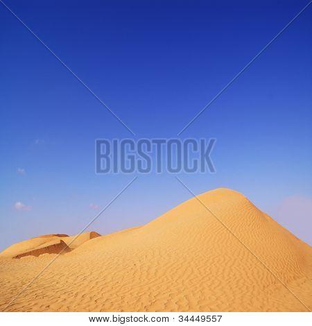 Summer Day In The Desert