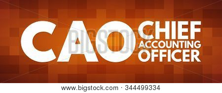 CAO - Chief Accounting Officer acronym, business concept background poster