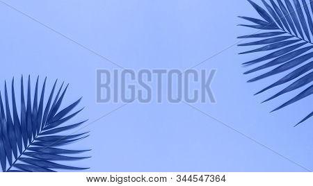 Tropical Palm Leaves On Blue Background. Flat Lay, Top View, Copy Space. Summer Background, Nature.