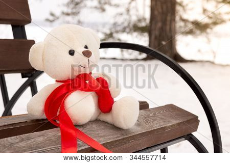 Sad Teddy Bear In Winter, Lost And Forgotten. Teddy Bear Alone On A Bench In The Winter.