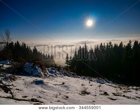 Tree Branches After Deforestation In The Carpathian Mountains, Dense Fog In The Valley , Visible Len