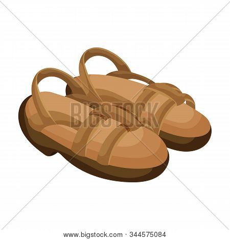 Sandal Vector Icon.cartoon Vector Icon Isolated On White Background Sandal .