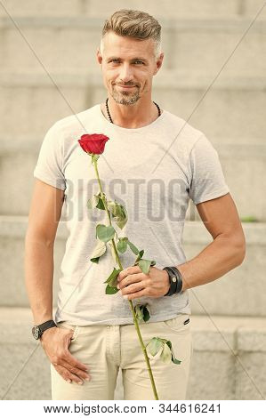Little Romance Can Enhance Your Love Life. Handsome Guy With Rose Flower Romantic Date. Valentines D