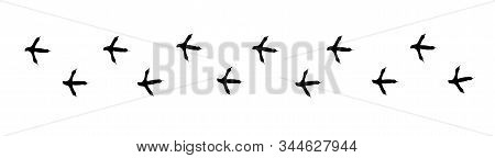 Footpath Trail Of Bird. Turkey Or Partridge Paws Walking Randomly Print Vector Isolated On White Bac