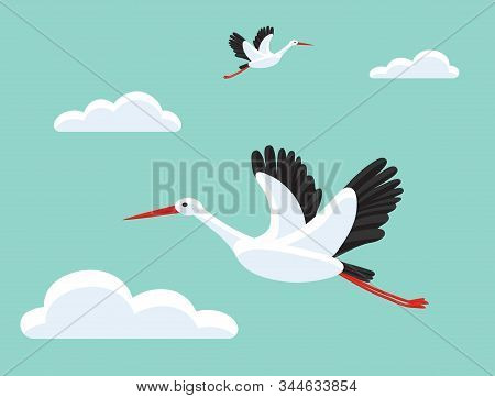 Storks Flying In Sky. Bird As Symbol For Baby Shower, Delivery, News, Pregnancy. Beautiful Backgroun