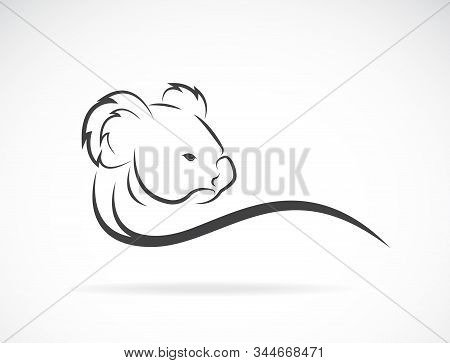 Vector Of A Koala Bear Head Design On White Background. Animal. Wildlife. Easy Editable Layered Vect