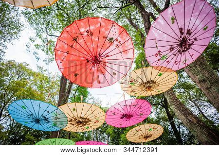 Chinese Traditional Multicolored Umbrellas Hanged On Trees Low Angle View In Guilin, Guangxi Provinc