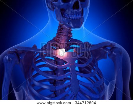 3d rendered medically accurate illustration of a painful clavicle joint