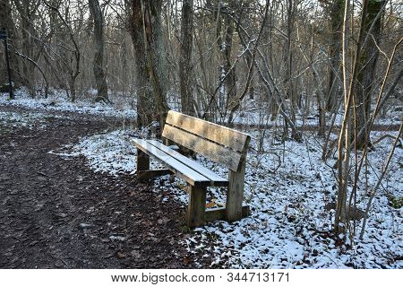 First Snow On A Wooden Bench In A Deciduous Forest