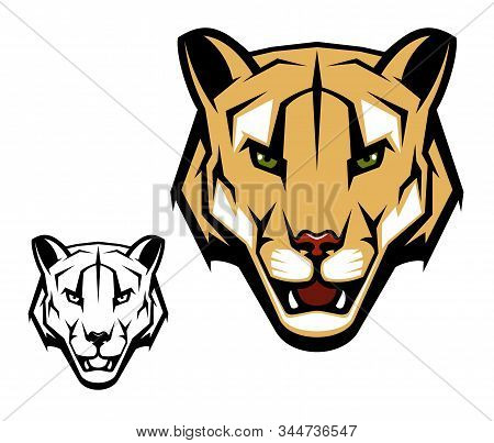 Cougar Puma Vector Mascot With Mountain Lion Head. Wild Cat Animal With Open Mouth, Dangerous Teeth