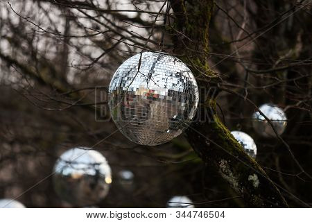 Discoball Hanging On Naked Tree As A Christmass Decoration. Photo Taken In Countryside City Kuldīga,