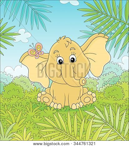 Little Baby Elephant Sitting On Green Grass And Playing With A Small Colorful Butterfly Against The