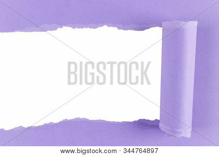 Torn Paper With Rolled Edge With Blank Space. Torn Paper With White Copy Space. Empty Space For Your