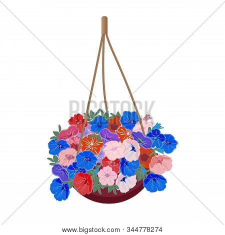 Bush Petunia Hanging Plant In A Hanging Basket To Decorate A Window Or Balcony. Colorful Flowers In