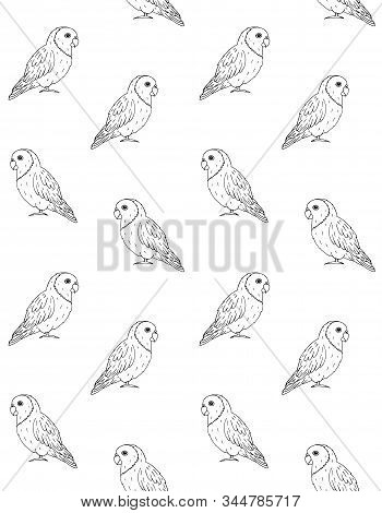 Vector Seamless Vector Photo Free Trial Bigstock