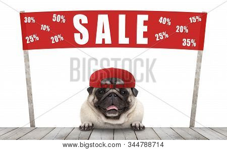 Frolic Smiling Merchant Pug Puppy Dog With Hat And Red Promotional  Banner Sign With Text Sale % Off
