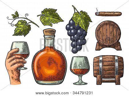 Glass, Barrel And Bottle Of Cognac. Vintage Engraving Illustration