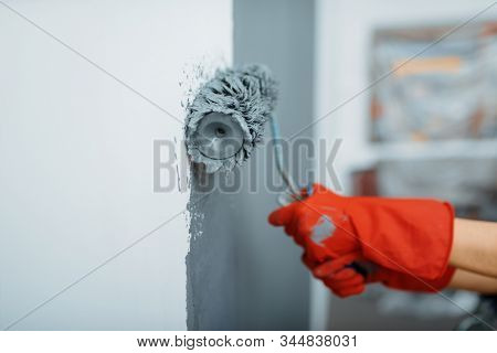 Female house painter hand with paint roller