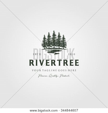 Evergreen Pine Tree Logo Vintage With River Creek Vector Emblem Illustration Design