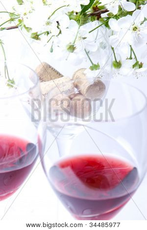 Wine glasses with red wine and a branch of a blossoming apple tree standing