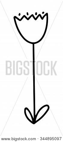 Cute Flower Tulip. Vector Doodle Outline Illustration Isolated On White Background. Desing For Kinds