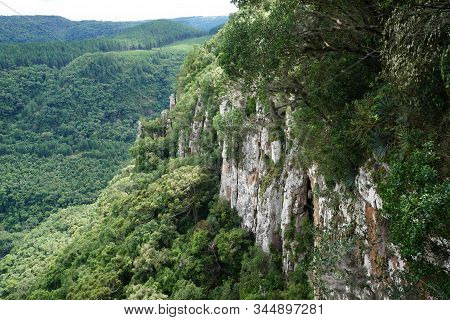 Paisagem Mostrando Parede De Pedras Em Conjunto Com árvores Ao Fundo