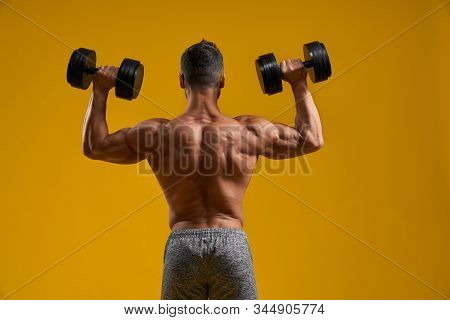 Back View Of Muscular Bodybuilder Lifting Heavy Weight. Shirtless Gentleman Pumping Up Arm Muscles.