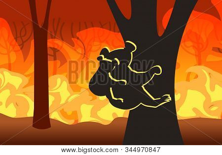 koala with joey silhouettes sitting on tree forest fires in australia animals dying in wildfire bushfire natural disaster concept intense orange flames horizontal vector illustration poster