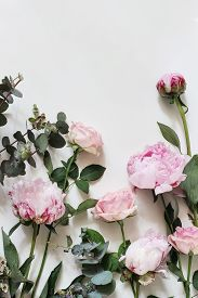 Feminine Styled Stock Photo With Pink Roses, Peony, Flowers And Eucalyptus Leaves And Branches Isola