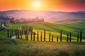 Well Known Tuscany Landscape With Grain Fields, Cypress Trees And Houses On The Hills At Sunset. Sum